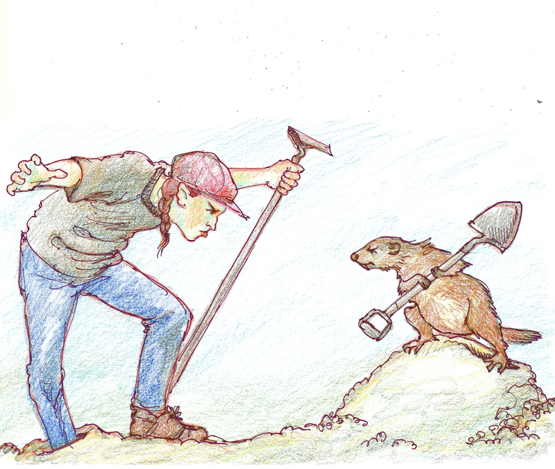 WoodchuckWars